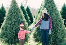 Christmas Trees / Our favorite Christmas trees, Christmas tree inspired products and art, Christmas tree craft ideas, and more.  It's that time of year!