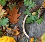 ✄ {DiY} Autome // #Autumn Crafts ✄ / Do it yourself et tutos pour les #kids sur la thématique de l'#automne