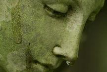 L'anima del verde / .......!
