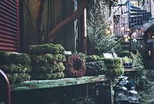 Wreaths | Kransen | Kränze | Couronnes