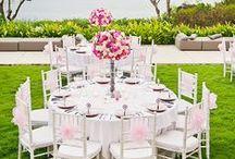 Wedding reception / Svatební hostina