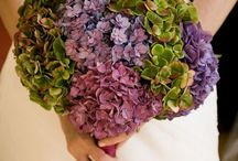 Wedding & Flowers / Bridal flowers