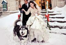 Wedding & Winter / Winter season Wedding styling ideas!