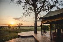 iSibindi Rhino Walking Tours, Southafrica / The Rhino Walking Tours of iSibindi Lodges in Southafrica offer a very special luxury AND outdoor safari event: 1 Night in a luxury safari tent and 1 night in a treehouse, all per foot and out in the bush. Terrific and wonderful. <3