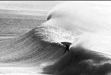 \\\ SURFING ///