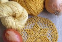 allium cepa / Photography - Story : natural dye process with onionskin