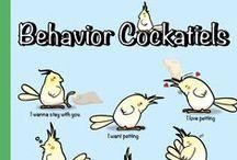 Animal Behavior / What it says :-)