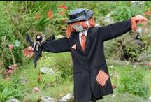 All Things Scarecrow / It's Scarecrow Time! / by Marian McCoy Boveri