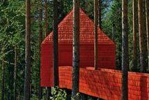 * TREE HOUSE *