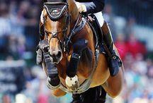 Olympics / Equestrian
