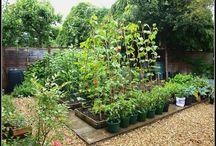 Backyard Ideas / Ideas for the backyard