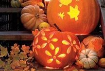 Fall & all / Beautiful decorations , colors spectacular and all we can with its reachness