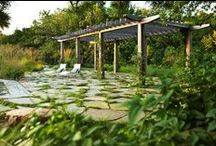 Landscape Design + Ideas / Creativity without limitations.