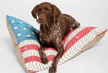 Crafty Pet Beds and Dog Houses