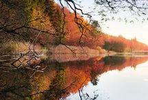 Foto: Herbst