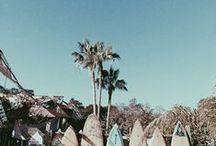 Beachie