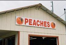 PeachT