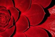 Farben: Rot