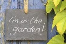 I'm in the garden ! / Jardin, garden