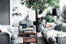 Home Accents / The little things that define your home