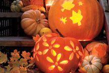 Halloween / by Carrie Koeppen Stock