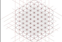 flower of life / by Meta Lin