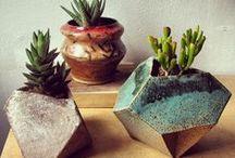 mini-green. / mini gardens