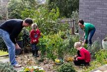Vegetable Gardening with Kids / Growing fresh food and family memories in your backyard vegetable garden