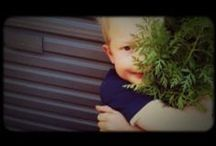Vegetable gardening videos / Tips and information about starting a family vegetable garden and gardening with preschoolers