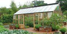 Potting sheds and glasshouses / Glass house design and potting sheds