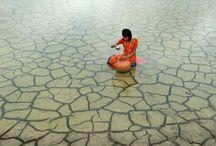 Climate Change / Exposing the climate change phenomena