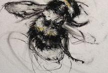 >>My drawings<<