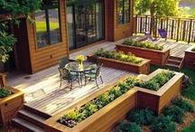 Back yard /gardening stuff
