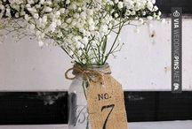 Wedding reception ideas / by Antoinette Vitale