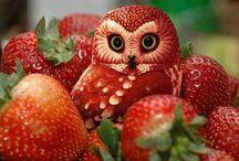 Fruit Art ♥