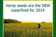 All about Hemp / A plant to take note of...