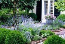 Front garden ideas / Ideas for our front garden