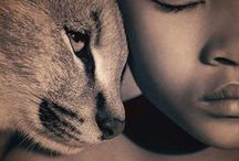 Gregory Colbert Photography
