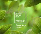 Cor Pantone 2017: Greenery