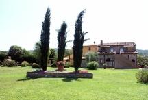Agriturismo San Domenico
