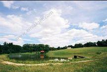 Çiftlik Evi / Farmhouse, satılık çiftlik evi