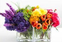 Çiçek Aranjmanları / Flowers