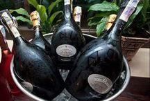 Great Wine in Veneto Region, Italy / Colli Euganei, Verona......