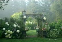 gardens / by Elisa Escovar