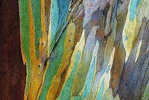 Tree bark and wood - nature's abstract art