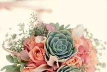 Bouquets / Beautiful flowers