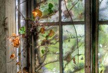 Through a glass darkly / by Georgie Smith