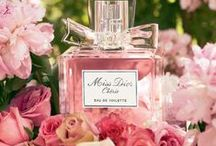 Perfumes Collections / Collection of Perfumes for men and women.