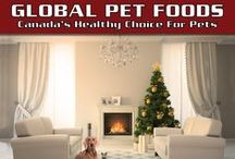 Christmas Gift Ideas 2015 / Indulge your pet this Christmas with some new and fun toys, a cozy coat or sweater, a comfy bed, a new food or water dish, and some yummy treats. Global Pet Foods stores are stocking up on everything you'll need to ensure your pets jump for joy too on Christmas morning!