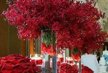 Red / Burgundy Weddings